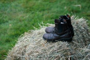 Boots on Hay