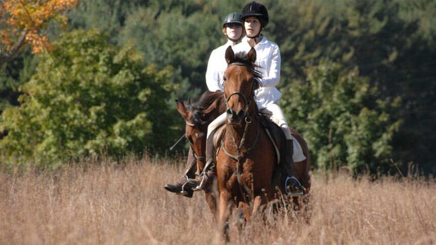 Join us on a Guided Trail Ride in the Reservation