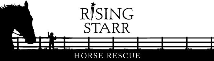 Rising Star Horse Rescue
